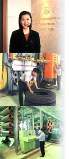 Hihero Company Information